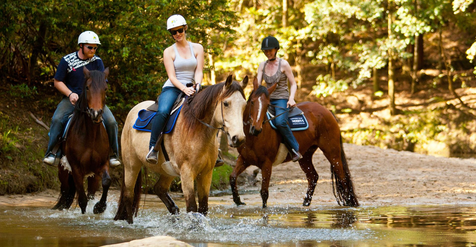 Glenworth-Valley-Free-Range-Horse_riding_001